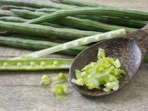 Drumsticks Benefits kannada-ನುಗ್ಗೆಕಾಯಿ